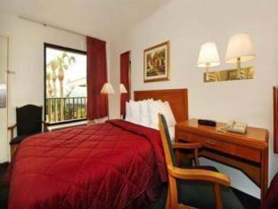 Comfort Inn Of Orange Park Orange Park (FL) - Guest Room
