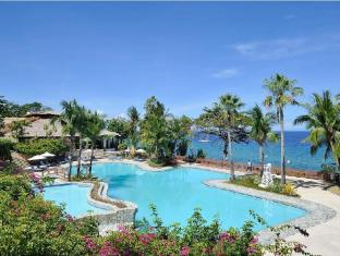Alegre Beach Resort Cebu City - Swimming Pool
