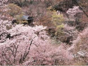 Takaragawa Onsen Osenkaku image