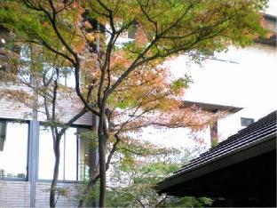 森林度假区 汤之里杉菜 image