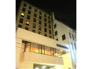 Okayama View Hotel image
