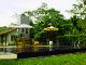 Калутара - Omatta Villa