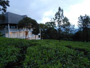 Tea Harvester - Munnar
