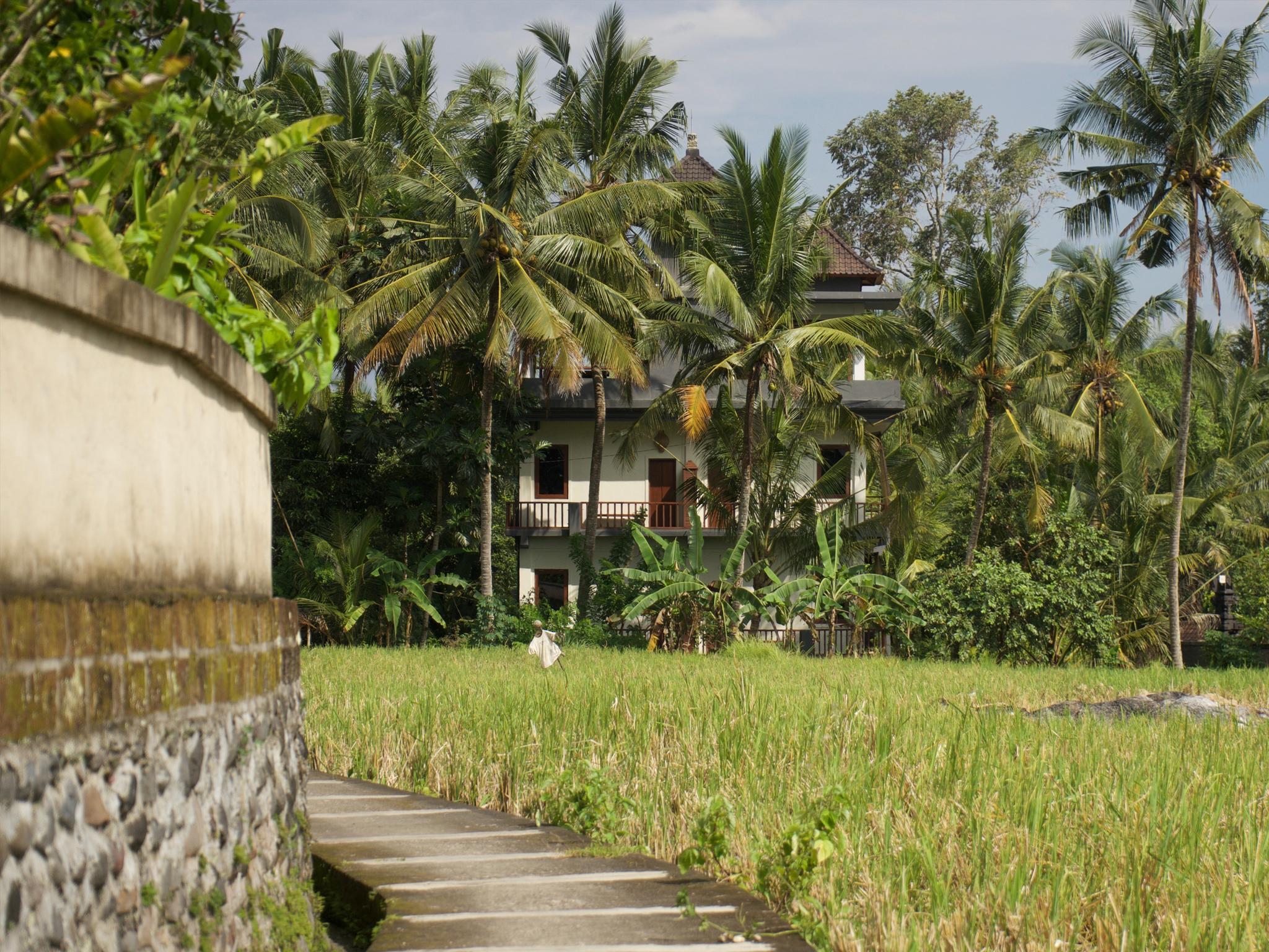 Hotel Eden House Ubud Bali - Jl. Raya Ubud subak sokwayah abangan Ubud Bali  - Bali