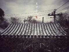 Oriental Beauty, Beijing