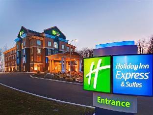 Promos Holiday Inn Express Hotel & Suites Hamburg