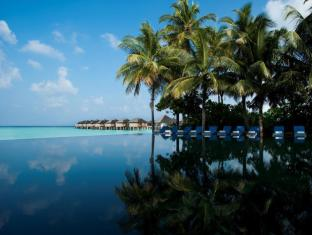 The Sun Siyam Iru Fushi Luxury Resort Maldives Islands - Infinity Couples Pool