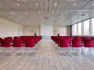 丽笙蓝光酒店-哥本哈根斯堪的纳维亚  丽笙蓝光-哥本哈根斯堪的纳维亚  图片