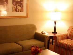 Country Inn and Suites By Carlson Ithaca Ithaca (NY) - Suite