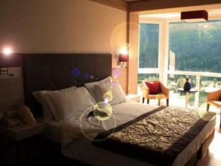 Antelao Dolomiti Mountain Resort
