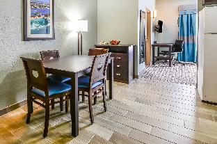 Comfort Suites Tampa - Brandon