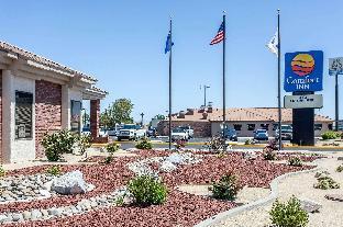 Promos Comfort Inn Near Fallon Naval Air Station Fallon