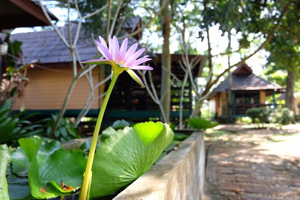 Baan Lalita Resort,Baan Lalita Resort