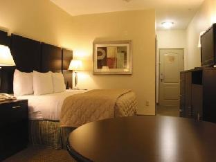 hotels.com La Quinta Inn & Suites Cedar Hill