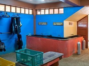 Oasis Beach & Dive Resort Bohol - Sport und Aktivitäten