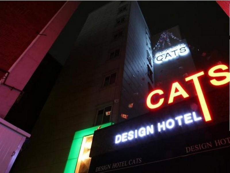 South Korea-캣츠 호텔 (CATS Hotel)