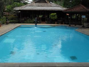 Bali Lovina Beach Cottages Balis - Baseinas