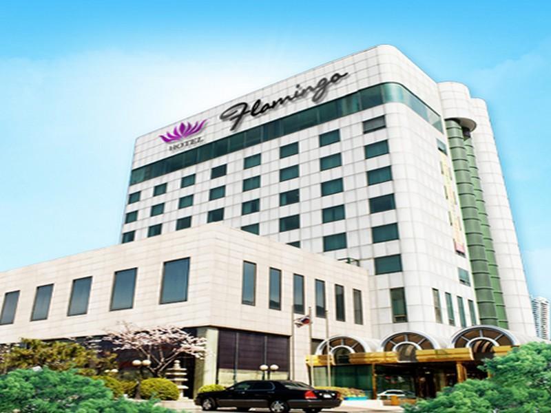 South Korea-플라밍고 호텔 (Flamingo Hotel)