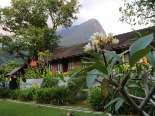 The Village House Kuching - Beautiful gardens