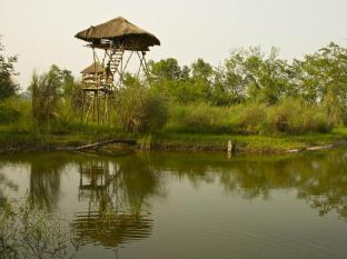 Maruni Sanctuary Lodge Chitwan National Park - Machan & Pond at Lodge