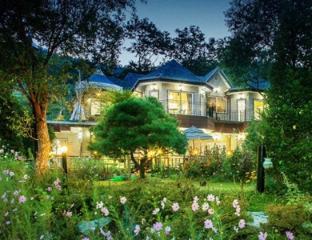Ivy House - Codlerhea