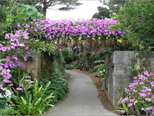 Terrace Garden Mihama Resort Okinawa - Nearby Attraction