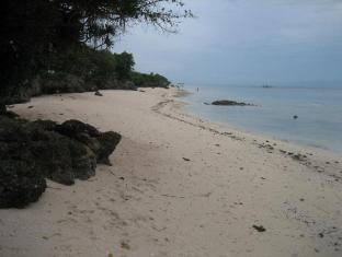 Sea Turtle House Moalboal - Persekitaran