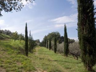 Agriturismo Villa Plini Hotel Trevi - Garden