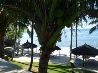FloWer-Beach Resort Bohol - Strand