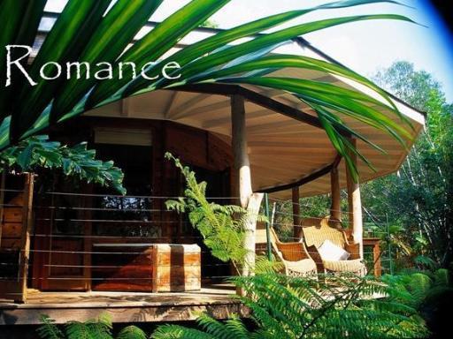 Mt Warning Rainforest Retreat PayPal Hotel Murwillumbah