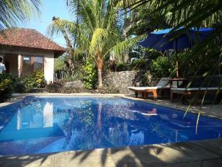 Anugerah Villas Amed Bali - Kolam renang