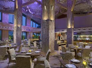 リゾート ワールド セントーサ - エクアリウス ホテル5