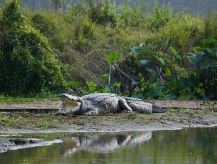 Baghmara Wildlife Resort Chitwan National Park - Nearby Attraction