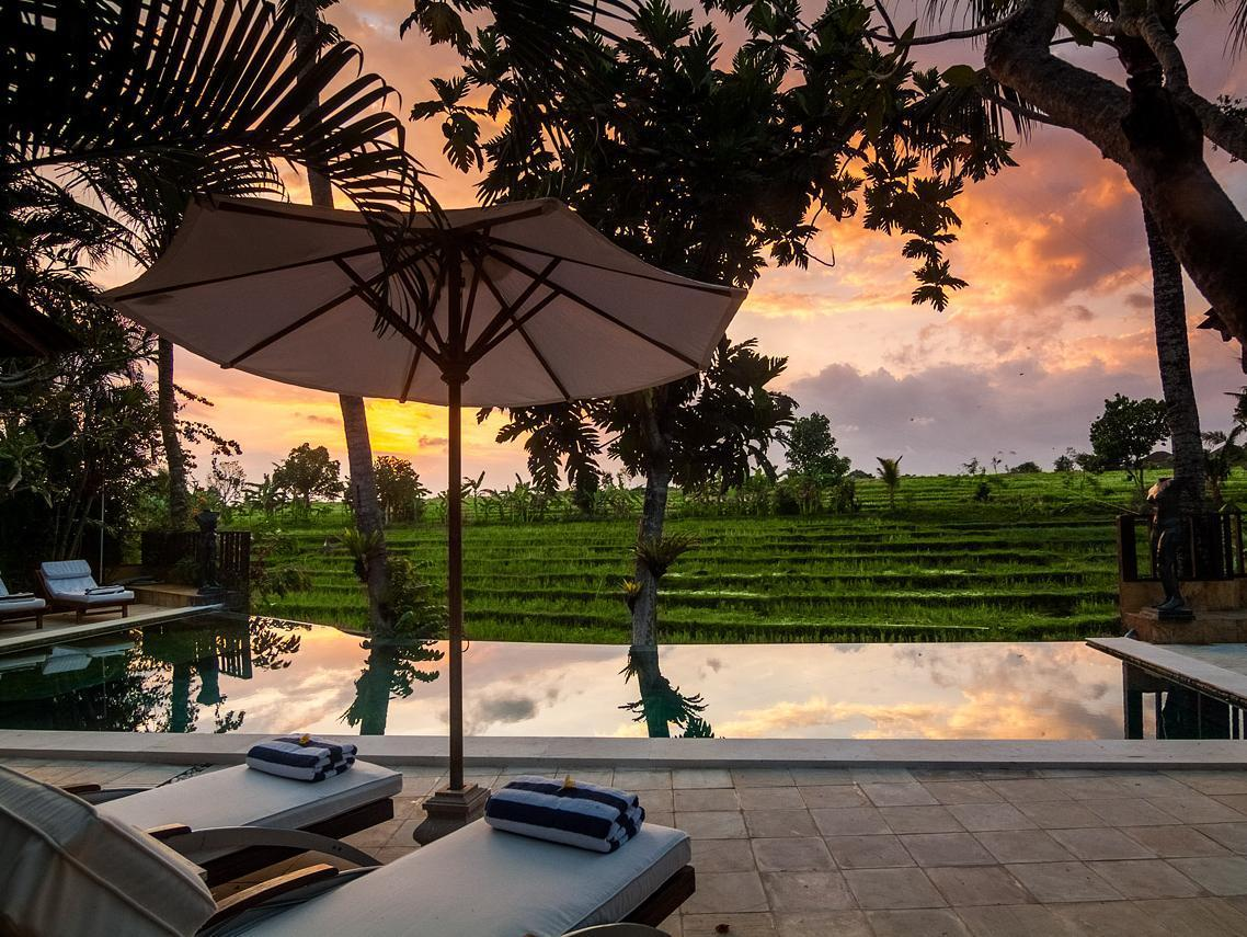 Serene Rice Field Terrace Canggu 3 Bedrooms Villa