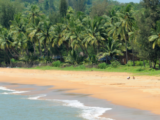 Coastal Jewel of Goa North Goa - Paplūdimys