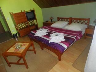 Hotel Autis Vysoke Tatry - Guest Room