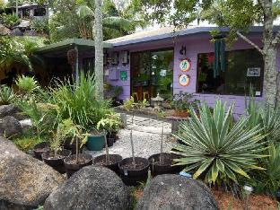 YHA Australia Hostels Hotel in ➦ Nimbin ➦ accepts PayPal