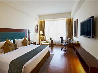 鲁德罗布尔丽笙酒店鲁德罗布尔丽笙图片