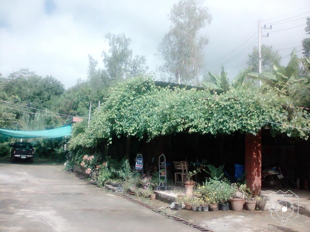 Ruan Kaeo  Home
