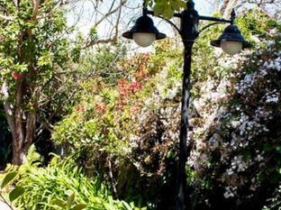 Orchard Lane Guest House Stellenbosch - Garden