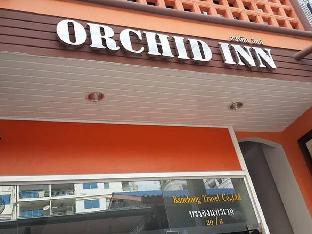 Logo/Picture:Orchid Inn