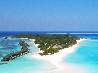Kuredu Island Resort and Spa PayPal Hotel Maldives Islands