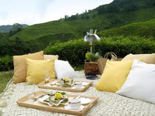 Cameron Highlands Resort Cameron Highlands - Signature Picnic Experience