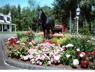 Black Horse Inn Lincolnville (ME) - Taman