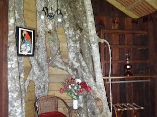 trivago Lupe Sina Treesort Hotel