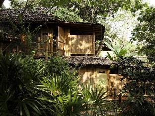 プーチャイサイ マウンテンリゾート アンドスパ Phu Chaisai Mountain Resort & Spa