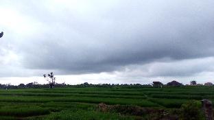 Jalan Raya Babakan - Tuka Canggu - Kuta Utara Bali