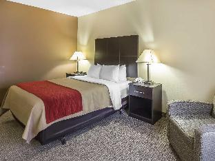 room of Comfort Inn & Suites
