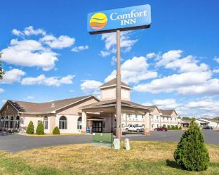 Reviews Comfort Inn