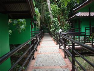 Khao Sok (Suratthani) Surat Thani